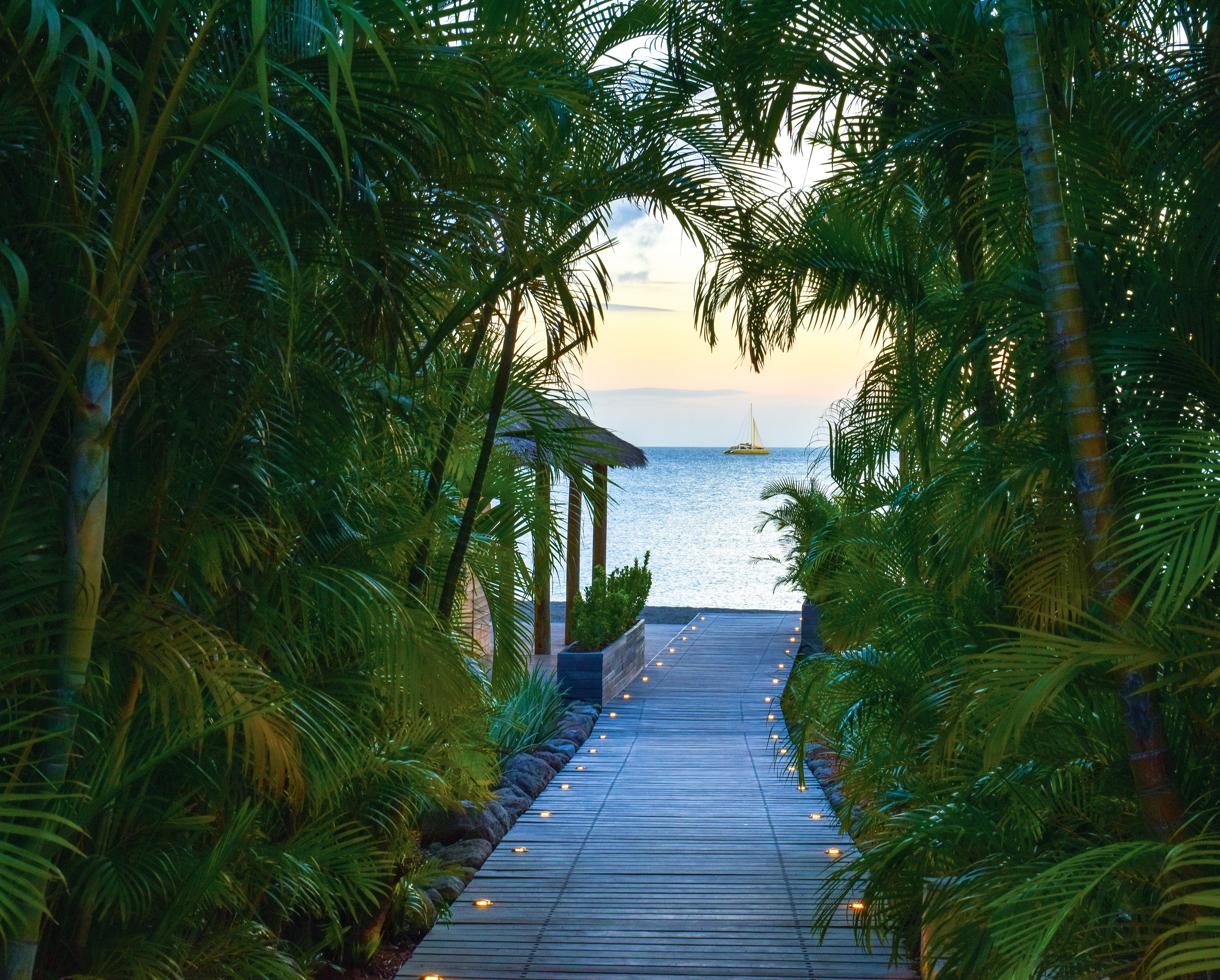 Nevis villas gardens