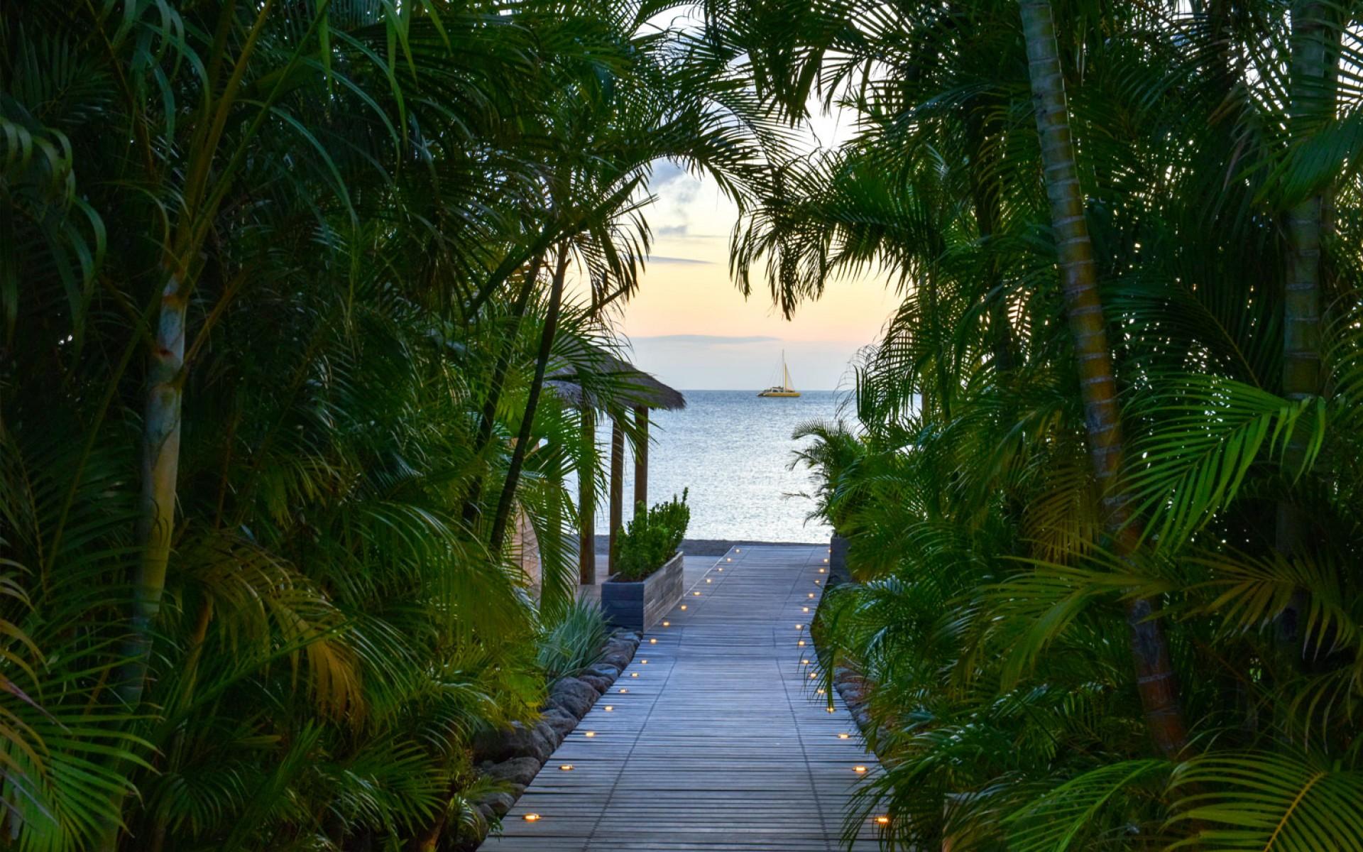 Caribbean villa garden