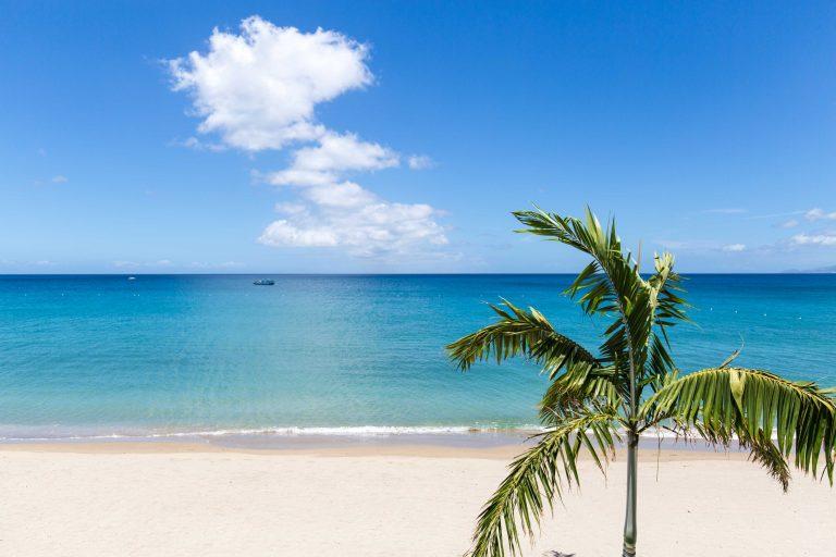 Paradise-Beach-Nevis_Beach-House_View_CMYK