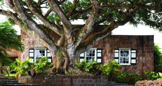 Buildings on Nevis, Caribbean resort
